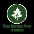 Killeen Tree